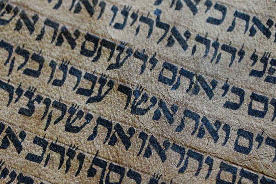 LEVITICUS AND THE TIMES